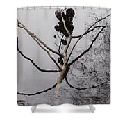 What You Make Of It ....closer Shower Curtain