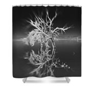 Whats Left Black And White Shower Curtain