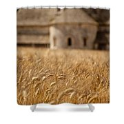 Wheat At The Abbaye Shower Curtain