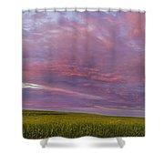 Wheat Field Sunset Panorama Shower Curtain