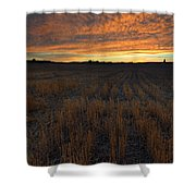 Wheat Stubble Sunset Shower Curtain by Mike  Dawson