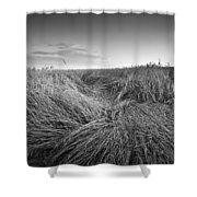 Wheat Waves Shower Curtain