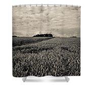 Wheatfields Shower Curtain