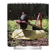 Wheel Barrow In A Yard Shower Curtain by Robert D  Brozek