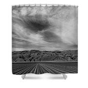 Wheeler Ridge Shower Curtain