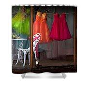 When A Woman Dreams Shower Curtain