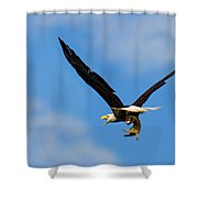 When Dogs Fly Shower Curtain