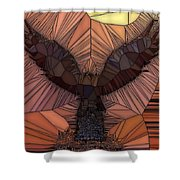 When Eagles Fly Shower Curtain