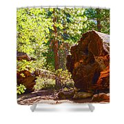 When Giants Fall Shower Curtain by Barbara Snyder