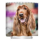 When Irish Eyes Are Smiling Shower Curtain