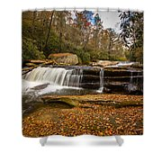 When Leaves Have Fallen Shower Curtain