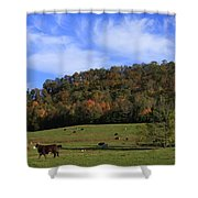 When The Cows Come Home-alabama Shower Curtain