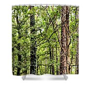 When The Forest Calls To Me Shower Curtain