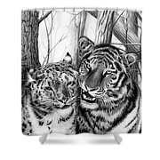 When Two Hearts Collide Shower Curtain by Peter Piatt