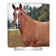 When You Look Me In The Eyes Shower Curtain