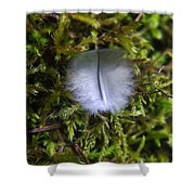 Where A Feather Finds Itself Shower Curtain