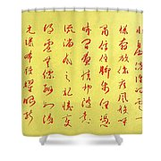 Where Dragons Dare To Soar Shower Curtain