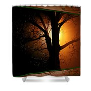 Where Have All The Flowers Gone-featured In Harmony And Happiness-naturephoto-visions Of The Night  Shower Curtain