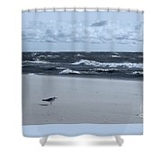 Where Is Everybody? Shower Curtain