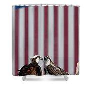 Where Ospreys Dare Shower Curtain