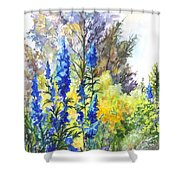 Where The Delphinium Blooms Shower Curtain