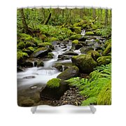 Where The Song Flows Into A Dream  Shower Curtain