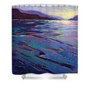 Where The Whales Play 3 Shower Curtain