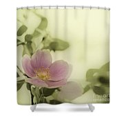 Where The Wild Roses Grow Shower Curtain