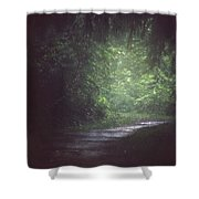 Wherever The Path May Lead Shower Curtain
