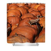 Which One Is The Great Pumpkin Shower Curtain
