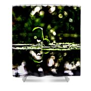 Which Way Is Up Shower Curtain