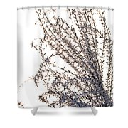 Whiff Shower Curtain