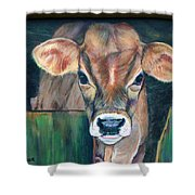 Whiley Calf Shower Curtain
