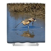 Whimbrel Shower Curtain