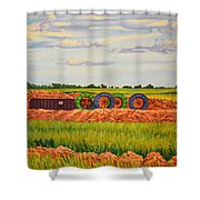 Whimsical Design Shower Curtain