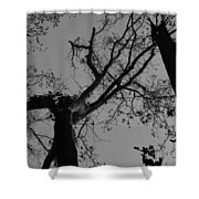 Silhouette Trees Shower Curtain