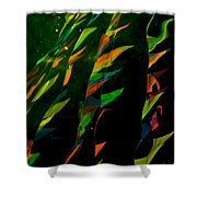 Whimsical Flags Shower Curtain