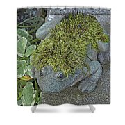 Whimsical Frog Shower Curtain