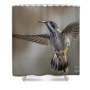 Whimsical Gem... Shower Curtain