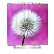 Whimsical Wishes Shower Curtain
