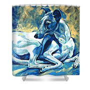 Whippet-effects Of Gravity 5 Shower Curtain