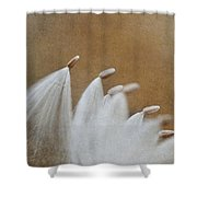 Whirling Dervishes Shower Curtain