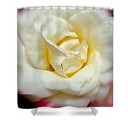 Whirling Rose Shower Curtain