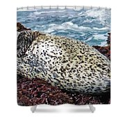 Whiskers And Spots Shower Curtain