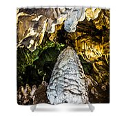Whispers II  Shower Curtain