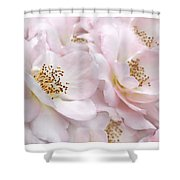 Whispers Of Pink Roses Shower Curtain