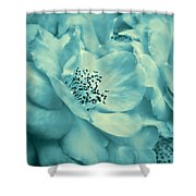 Whispers Of Teal Roses Shower Curtain