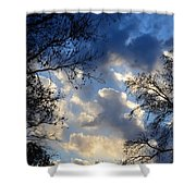 Whispers Of Winter Present Shower Curtain