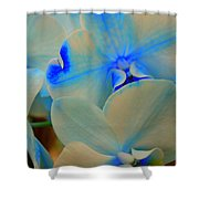 White And Blue Orchid Shower Curtain