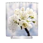 White And Bright - Beautiful Blossoms Shower Curtain